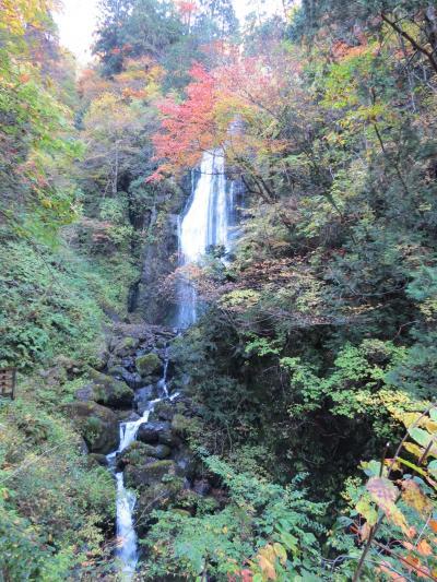 津軽出羽の紅葉・・田沢湖と抱返り峡谷をめぐります。