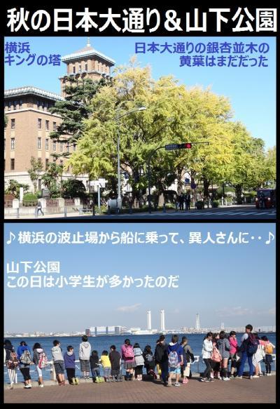 秋の日本大通り&山下公園