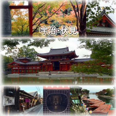 神戸・京都の旅2 -お化粧直しした平等院を見学、伏見の酒蔵レストラン「月の蔵人」でランチ、寺田屋見学-