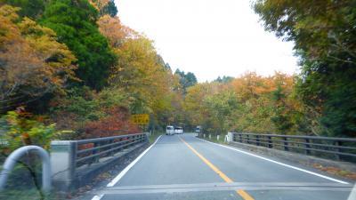 急に思い立って行った、熊本・大分 レンタカーでドライブ&観光と紅葉狩り1泊2日の旅【《杖立温泉》から、小国町、阿蘇スカイラインなど経由で《菊池渓谷》に移動編】(2014年11月)