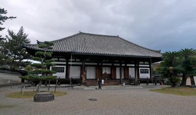 【国内173】奈良とんぼがえり1-奈良とんぼがえり,法華寺で十一面観音を久しぶりに拝む
