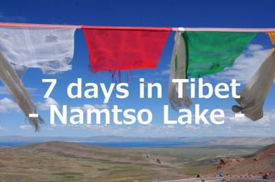 7 days in Tibet21★ナムツォ湖★タルチョはためく丘からナムツォ湖を見下ろす