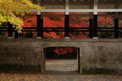2014・11京都の紅葉を見に行こう ②