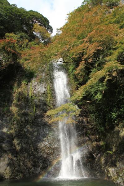 箕面の大滝 11月10日の紅葉はこれからでした。