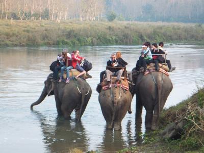 年末年始のネパール旅行(3)