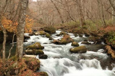 秋をすっ飛ばして八甲田はもう冬でした 酸ヶ湯、奥入瀬