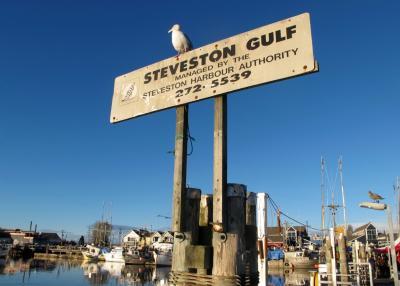 港町スティーブストン 5回目: 100年前の漁村 フィン・スルー & 漁港の赤ウニ