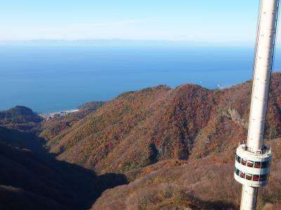 近くに行きたい season2♪ 「えちごツーデーパスでいざ弥彦神社へ(*^_^*)」