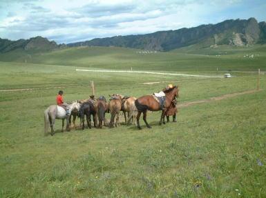 モンゴルの旅