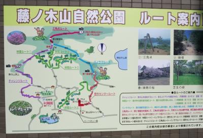 藤ノ木山自然公園