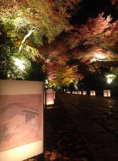 石山寺紅葉ライトアップと琵琶湖沿いのイルミネーション!!
