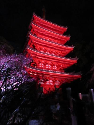 博多千年煌夜 ライトアップウォーク2014年 Vol 6 東長寺