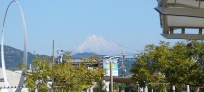 天然南鮪 と 流れ鮨、静岡市はいいね。1泊2日の旅 Vol.1 エスパルスドリームプラザ ホテル センチュリー静岡 【2014年11月23日~2014年11月24日】