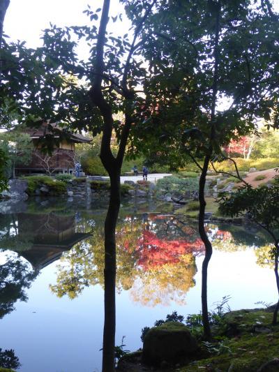 奈良でのオフ会。待ちきれなくて一日早く奈良を散策。