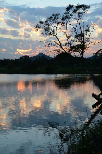 週末香港D1-3★自然に癒され充実した週末~米埔湿地周辺に迷い込む~
