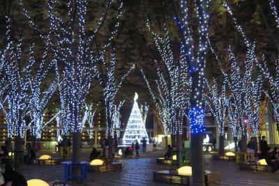 2014年11月 さいたま新都心 けやき広場ライトアップ