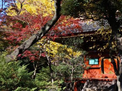 東京上野公園に紅葉を訪ねて