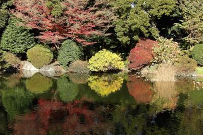 トーハクの庭園で秋を満喫(2)