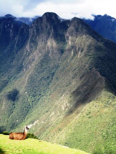 インカ道トレック3泊4日!~世界遺産マチュピチュまでインカ帝国の足跡を辿る~②