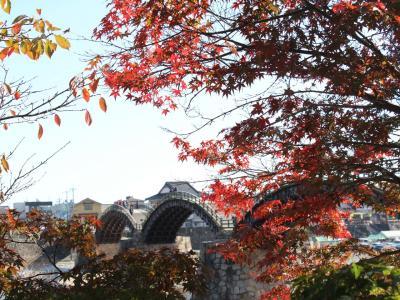 錦帯橋の夜と昼~岩国にも紅葉谷公園ってあるのね◆岩国でランチといえば「いろり山賊」