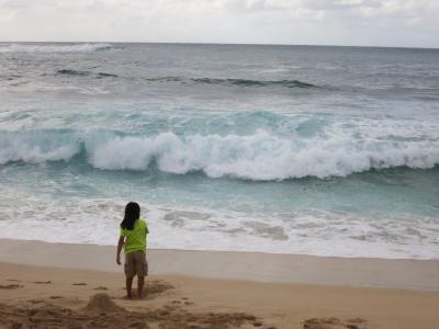 2014 会社を休んでハワイへ行こう♪
