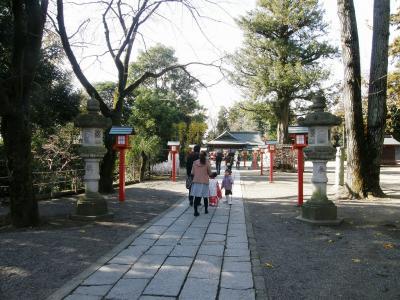 晩秋のウォーキングコースから見られた風景・・・③鷲宮神社の七五三風景