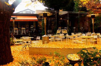 明治神宮外苑いちょう並木のいちょう祭(雨の日) 2014年
