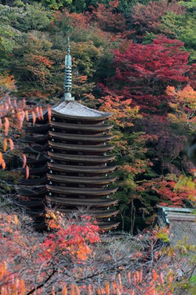 紅葉の談山神社 (写真集)