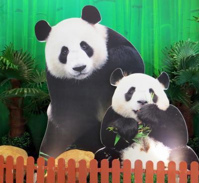 マカオのパンダちゃんを訪ねて 2014.8.16
