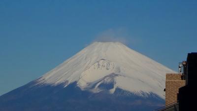 今朝の風景・・・富士山とヤマガラさん