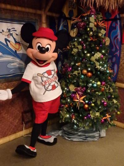 アメリカディズニーランドリゾート~とにかくグリとワールドオブカラークリスマスVerに感動~【2日目】