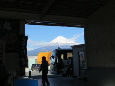 田子の浦漁港で昼食を