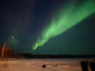 奥様が突然「オーロラが見たぁぁぁい!」と…カナダ・イエローナイフ5日間の旅~(1)満天の星空に白竜を見た!