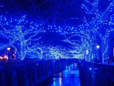 <お得なきっぷで横須賀・2>夕暮れの観音崎&どぶ板通り・締めは目黒川「青の洞窟」で!