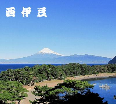 身延山~西伊豆 富士山ぐるり一周ドライブ その2