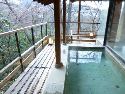 2014年末は箱根・武蔵野別館で湯あみ