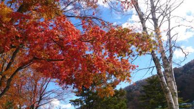 秋の日光へ