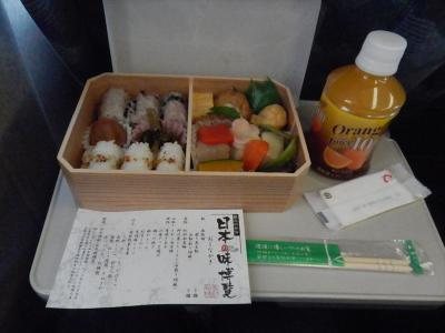 東海道新幹線に乗車の旅。