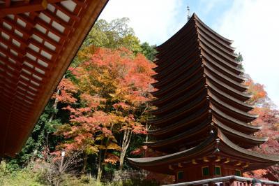 談山神社(桜井市)の紅葉