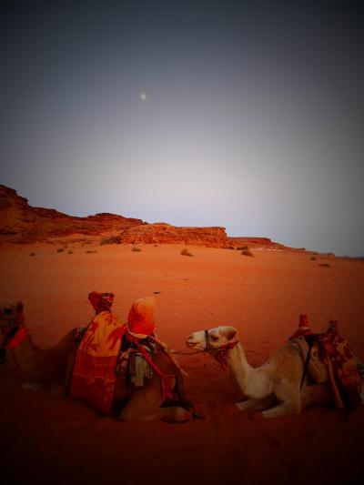 ヨルダン・セイシェル・ドバイを旅する ~ヨルダンの死海リゾート&砂漠キャンプを巡る 編~
