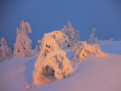 北欧の冬を体感する。フィンランド(&エストニア、デンマーク)9日間 <5日目、レヴィを滑る!夜はオーロラ☆>