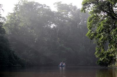 コスタリカ 生物多様性&熱帯林(9/全12): トルトゲーロ 猿と水鳥の楽園 ジャングル・クルーズ