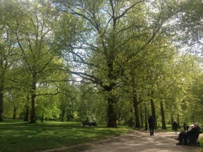 イギリスの旅 1 【ロンドン】お散歩