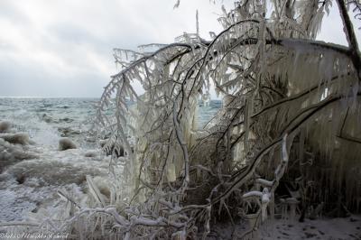 2015-しぶき氷