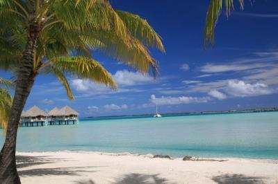 こんなに綺麗な「青」があったとは ボラボラ島&タヒチ島の旅