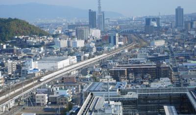 天然南鮪 と 流れ鮨、静岡市はいいね。1泊2日の旅 Vol.4 流れ鮨 静岡パルシェ店 【2014年11月23日~2014年11月24日】