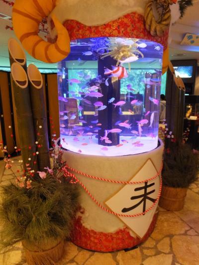 美ら海水族館 2015.1.3