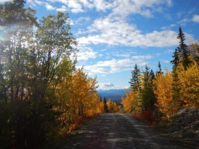 カナダ・ホワイトホースの旅(5日目):ホワイトホースを望むハイキング、そしてオーロラ