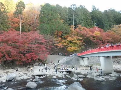 香嵐渓の紅葉を見に行こうよう!