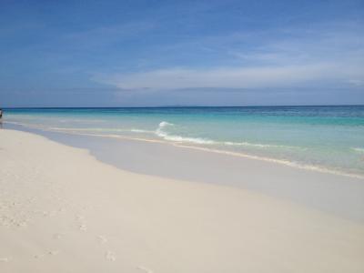 La Isla Bonita 2014-15冬 ~シミラン諸島・タチャイ島・プーケット・アユタヤ・バンコク~ 4th Days タチャイ島ツアー